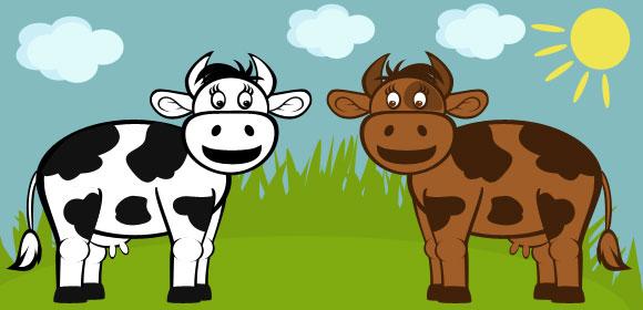 2-cows-580
